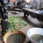Herbs are prepared for traditional medicine