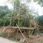 Bamboo scaffolding is strong and the materials are readily available locally